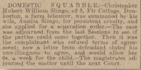 Domestic squabble, Bath Chronicle, Saturday 27 December 1919