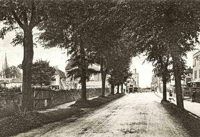 The Avenue Combe Down about 1908