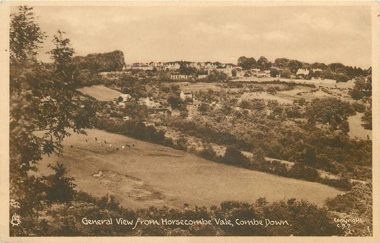 General view from Horsecombe Vale 1950 (With thanks to Tuck DB postcards https://tuckdb.org/)