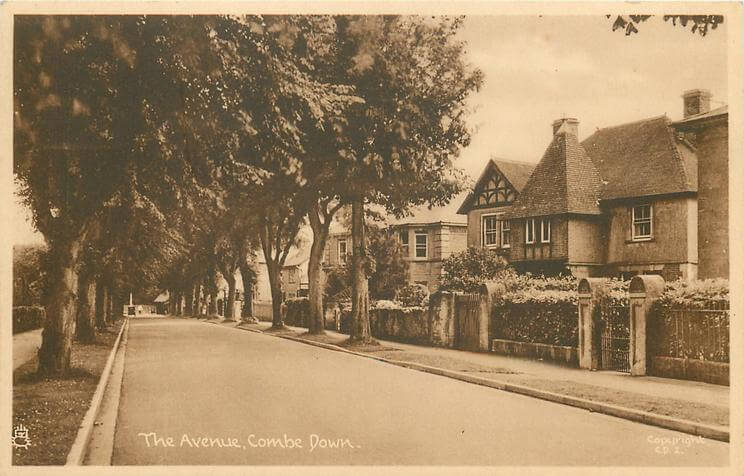 The Avenue 1950 (With thanks to Tuck DB postcards https://tuckdb.org/)