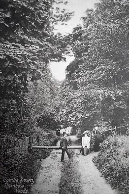Rainbow Wood, Combe Down 1911