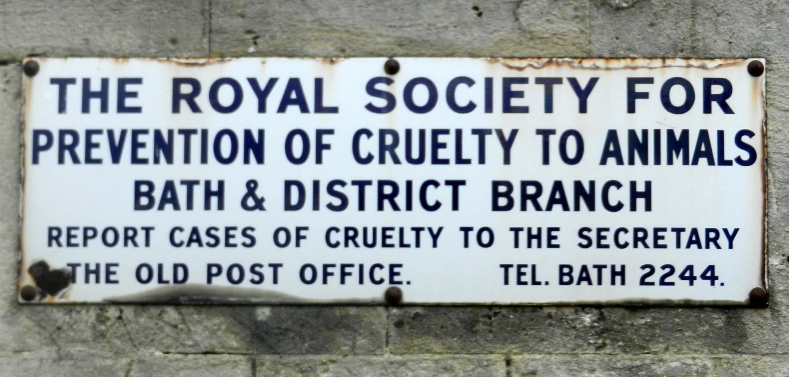 RSPCA sign at the end of The Avenue