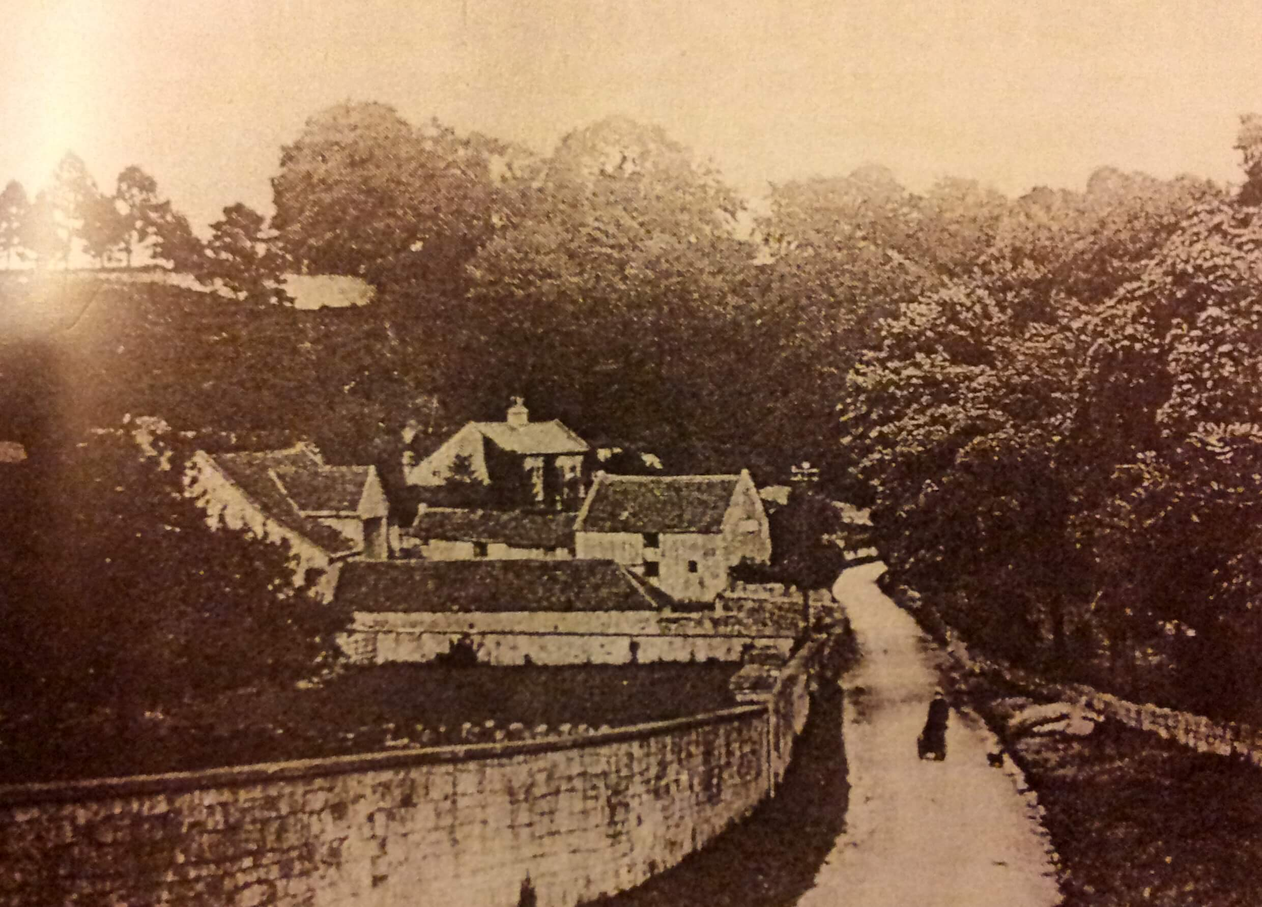 Summer Lane early 1900s