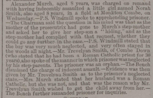 Indecent assault, Trevelyan Smith witness - Bath Chronicle and Weekly Gazette - Thursday 19 August 1880