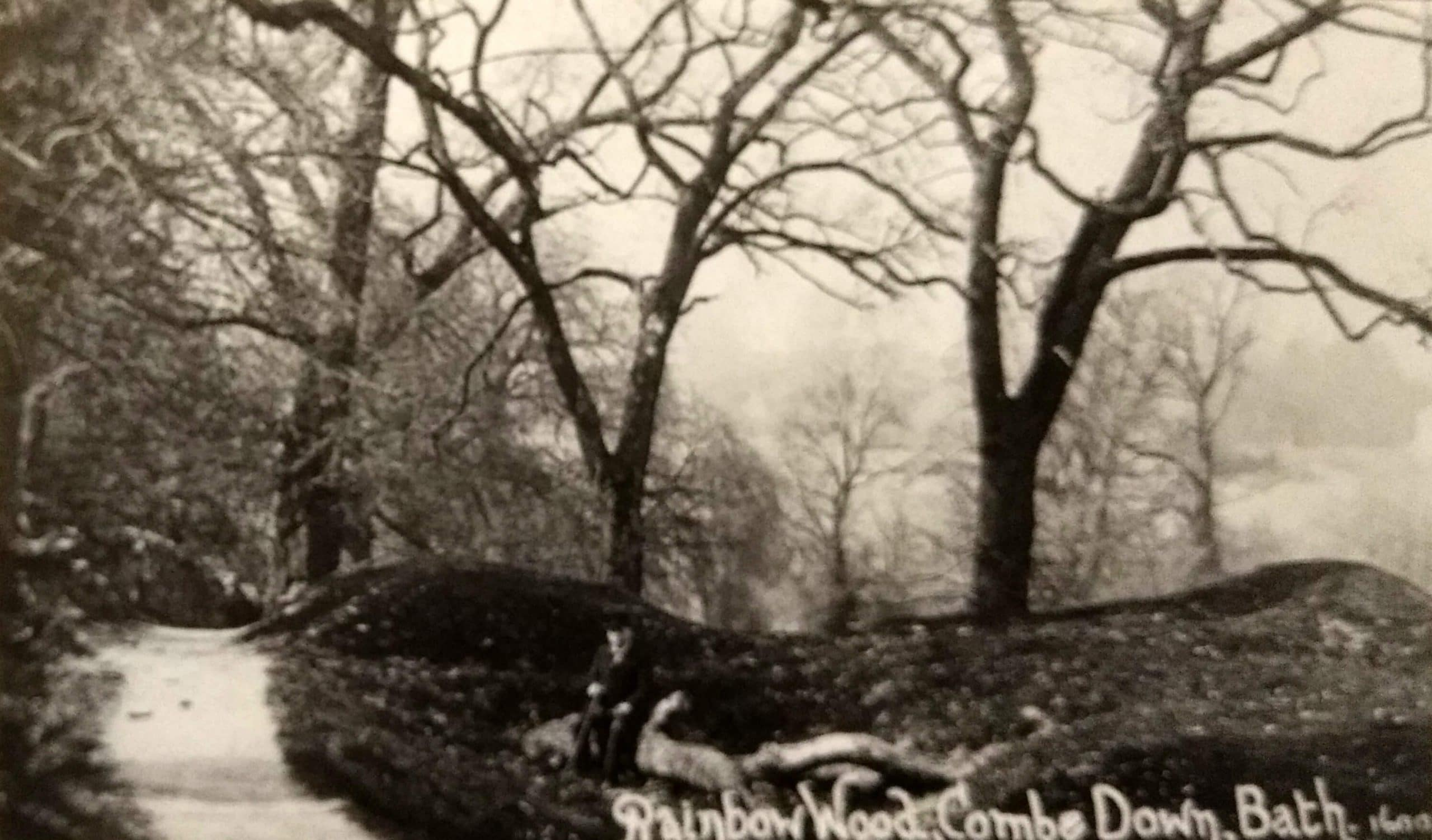 Rainbow Wood, Combe Down about 1915