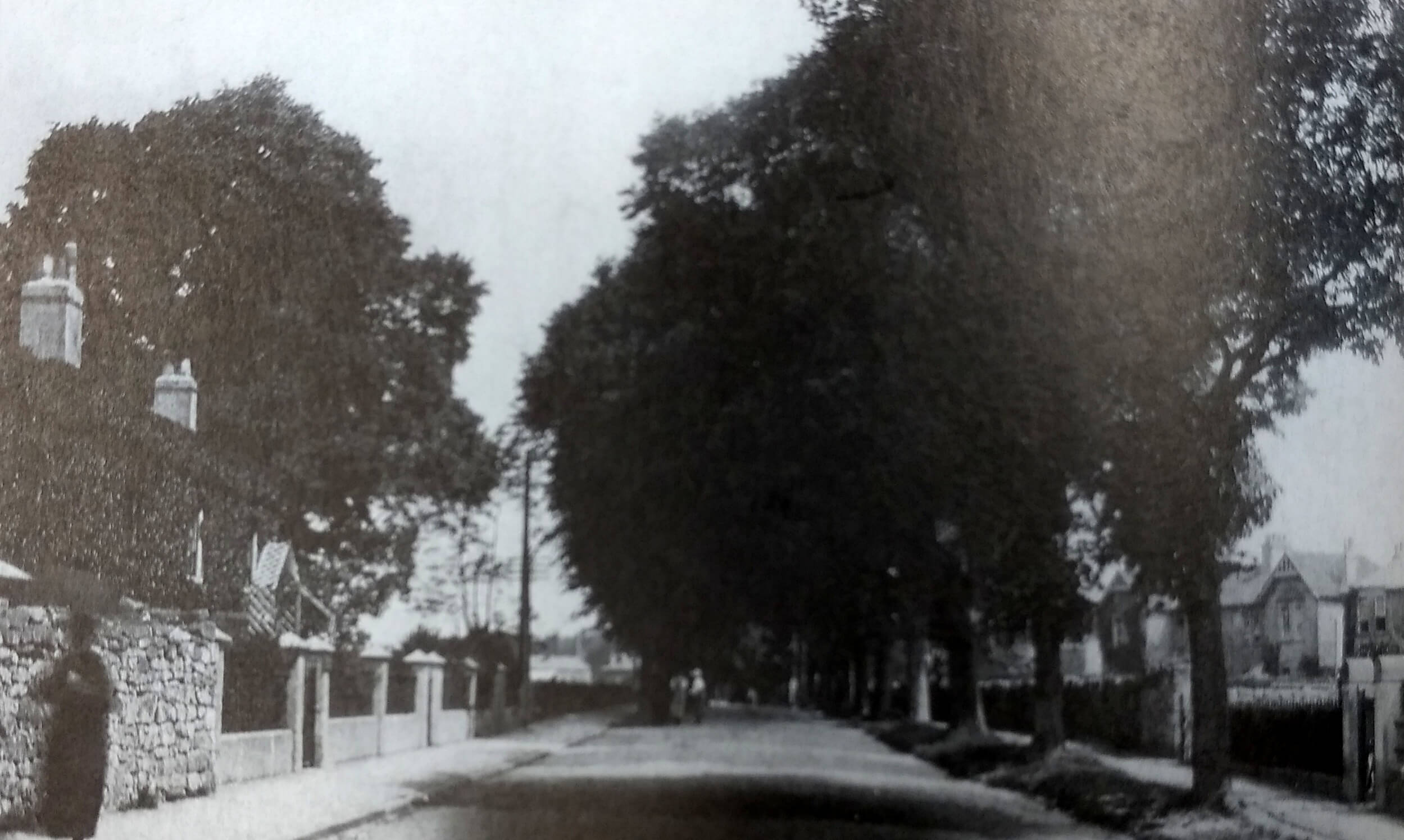 The Avenue, Combe Down about 1920