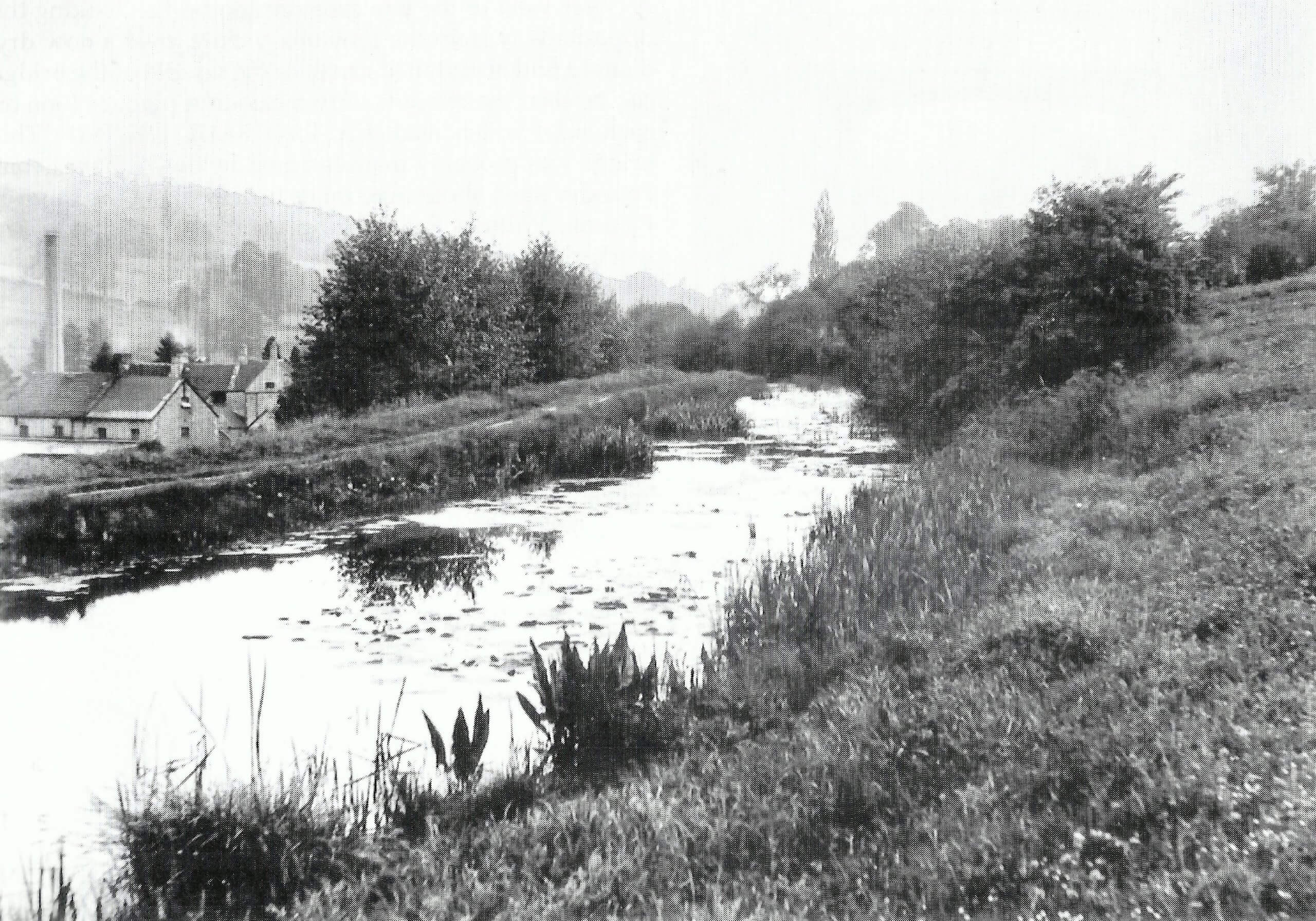 Canal by Freeman's Mill, Monkton Combe about 1905