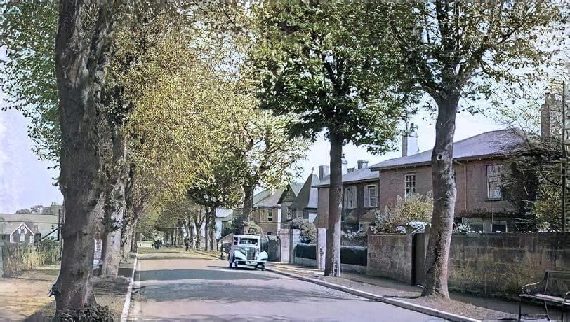 The Avenue, Combe Down, 1950s