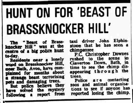 Beast of Brassknocker 1980