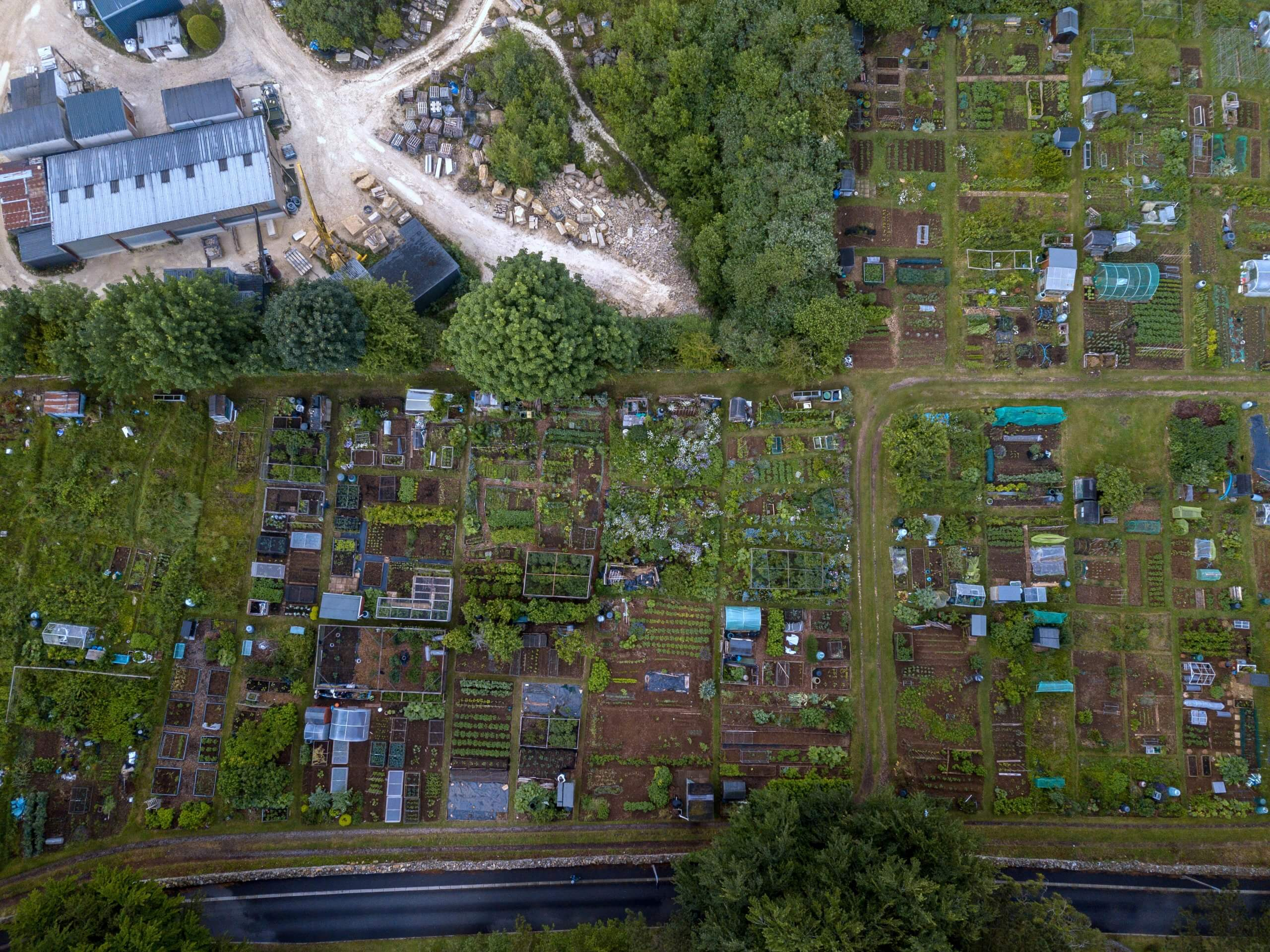Combe Down allotments 2019
